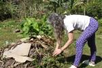 El-Nagual-composting